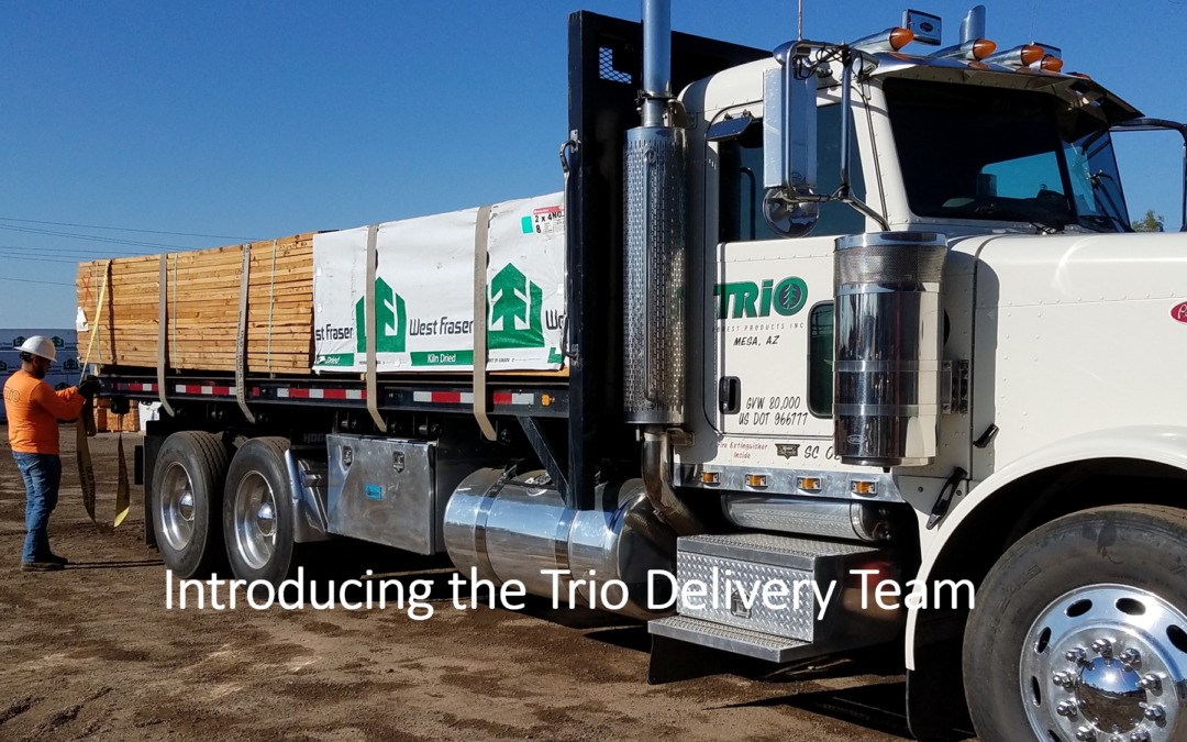 Trio spends extra time this month honoring our Delivery Team