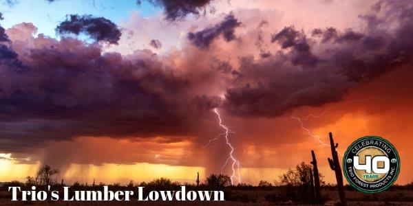 Managing your Lumber during Monsoon Season
